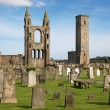 St Andrews cathedral grounds, Scotland, UK — Stock Photo
