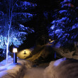 Stock Photo: Winter trees under illumination
