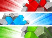 Set van banner met pentagon — Stockvector