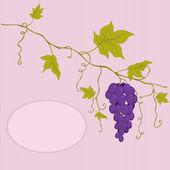 вектор красный виноград. — Cтоковый вектор