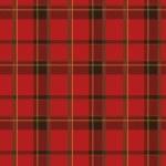 スコットランドの繊維 2 — ストックベクタ