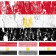 Egypt grunge flag set — Stock Vector