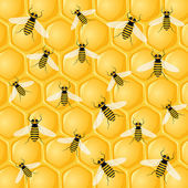 Many bees on honeycomb — Stok Vektör