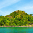 Andaman Shore — Stock Photo