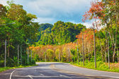 Highway in Thailand — Stock Photo