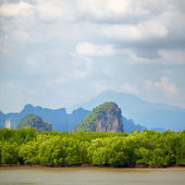 Krabi Rocks — Stock Photo
