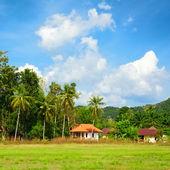 тайский пейзаж — Стоковое фото