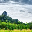 Stock Photo: Thai Mountain