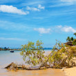 Andaman Sea Shore — Stock Photo