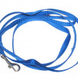 Stock Photo: Dog Leash