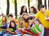 Aluno do grupo com o notebook ao ar livre. — Foto Stock