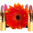 Stock Photo: Lipstick group. Decorative cosmetics.