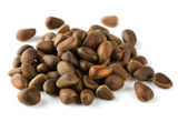 Cedar nuts — Stock Photo