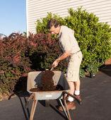 Senior man digging soil in wheelbarrow — Stock Photo