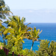 Condominiums in Kauai — Stock Photo #8869919