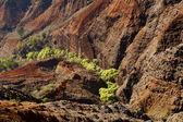 Waimea Canyon on Kauai — Stock Photo