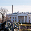 Civil war cannons at White House — Stock Photo #9022487