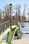 Bridge across the frozen pond — Stockfoto