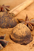 Cinnamon chocolate truffles and Star anise — Stock Photo