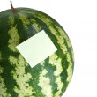 Reminder notes on water melon. — Stock Photo #7971112