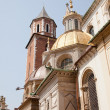 Wawel Cathedral - Stock Photo
