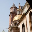 Wawel Cathedral — Stock Photo #8424808