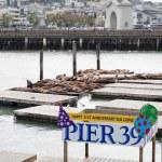 Pier 39 — Stock Photo #8448831