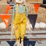 Scarecrow — Stock Photo #8451620