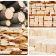 Set of wood lumber materials — Stock Photo #10150125