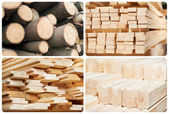 Set of wood lumber materials — Stock Photo