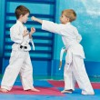 Stock Photo: Two boys make karate exercises