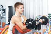 Bodybuilder man workout biceps muscle exercises — Stock Photo