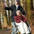 Elderly woman in wheelchair walking with son — Stock Photo