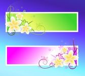 Spring banners — Stock Photo