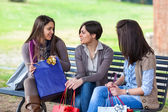 Young Women at Park after Shopping — Stok fotoğraf