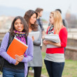 Stock Photo: Group of Multiracial College Students