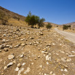 Stock Photo: Meandering Road