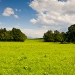 Pasture - Stock Photo