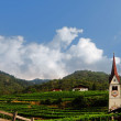 Church and Vineyard — Stock Photo