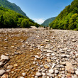 River Bed — Foto de Stock