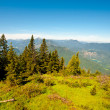 Bavarian Alps — Stock Photo