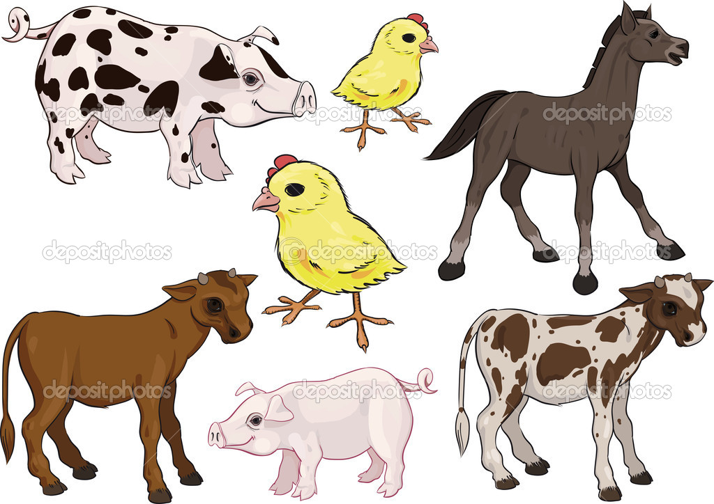 Farm Animals Set. Baby animals. Horse, Pig, Cow, Chicken — Stock Vector #8353949