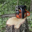 Chainsaw on stump — Stock Photo #10059629