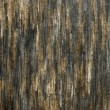 Old cracked wood — Stock Photo