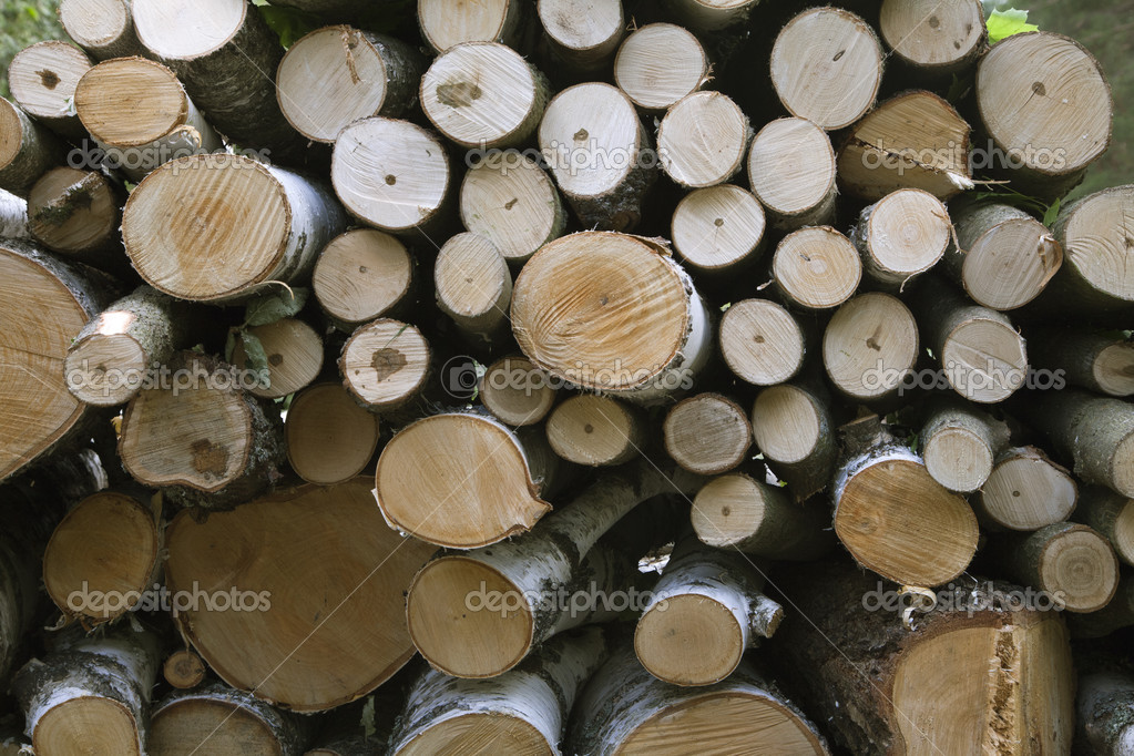 Close-up of big wood stack for background — Stock Photo #9470911