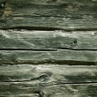 Wooden logs background. Wood texture — ストック写真