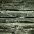 Wooden logs background. Wood texture — Stock Photo #10369636