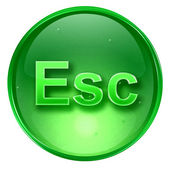 Esc icon green, isolated on white background. — Stock Photo