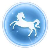 Koně zvěrokruhu ikony ledu, izolovaných na bílém pozadí. — Stock fotografie