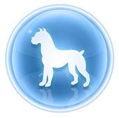 Dog Zodiac icon ice, isolated on white background. — Stock Photo